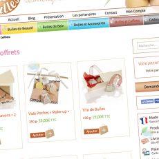 Projet de boutique en ligne : les questions à se poser