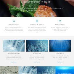theme-page-fluida