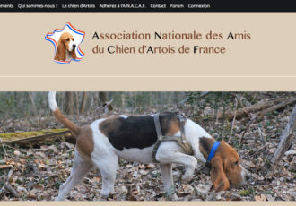 ANACAF, Association Nationale des Amis du Chiens d'Artois de France > chiensdartois.fr